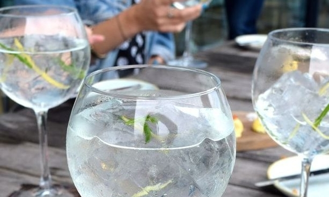 481258-gin-tonic-benefits.jpg